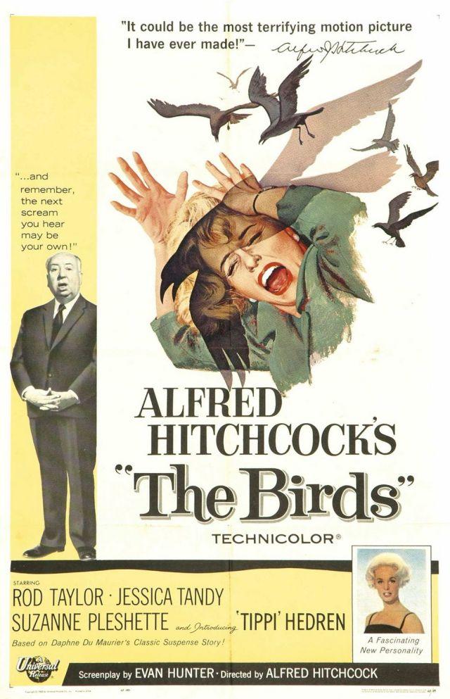 birds_poster